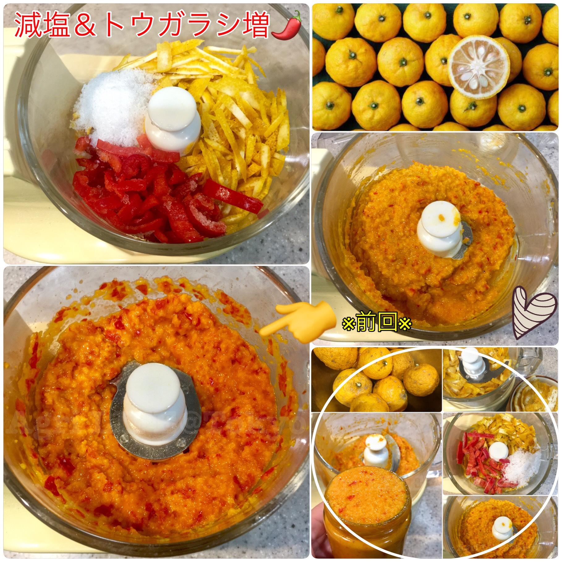 柚子胡椒の塩分濃度~冷凍保存の際の注意~